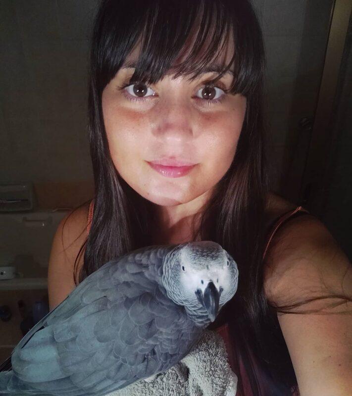 mega bird store reveiws